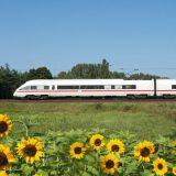 Reise-Challenge durch Deutschland