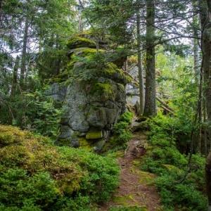 Reiseempfehlung Bayerischer Wald