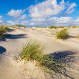 Urlaub in Schleswig-Holstein: aktuelle Corona-Regelungen